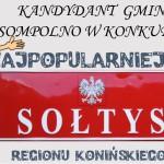 Ruszyło głosowanie na najpopularniejszego sołtysa regionu konińskiego!
